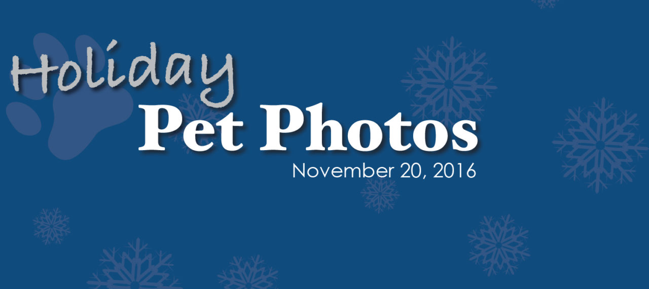 santa_photos_slider